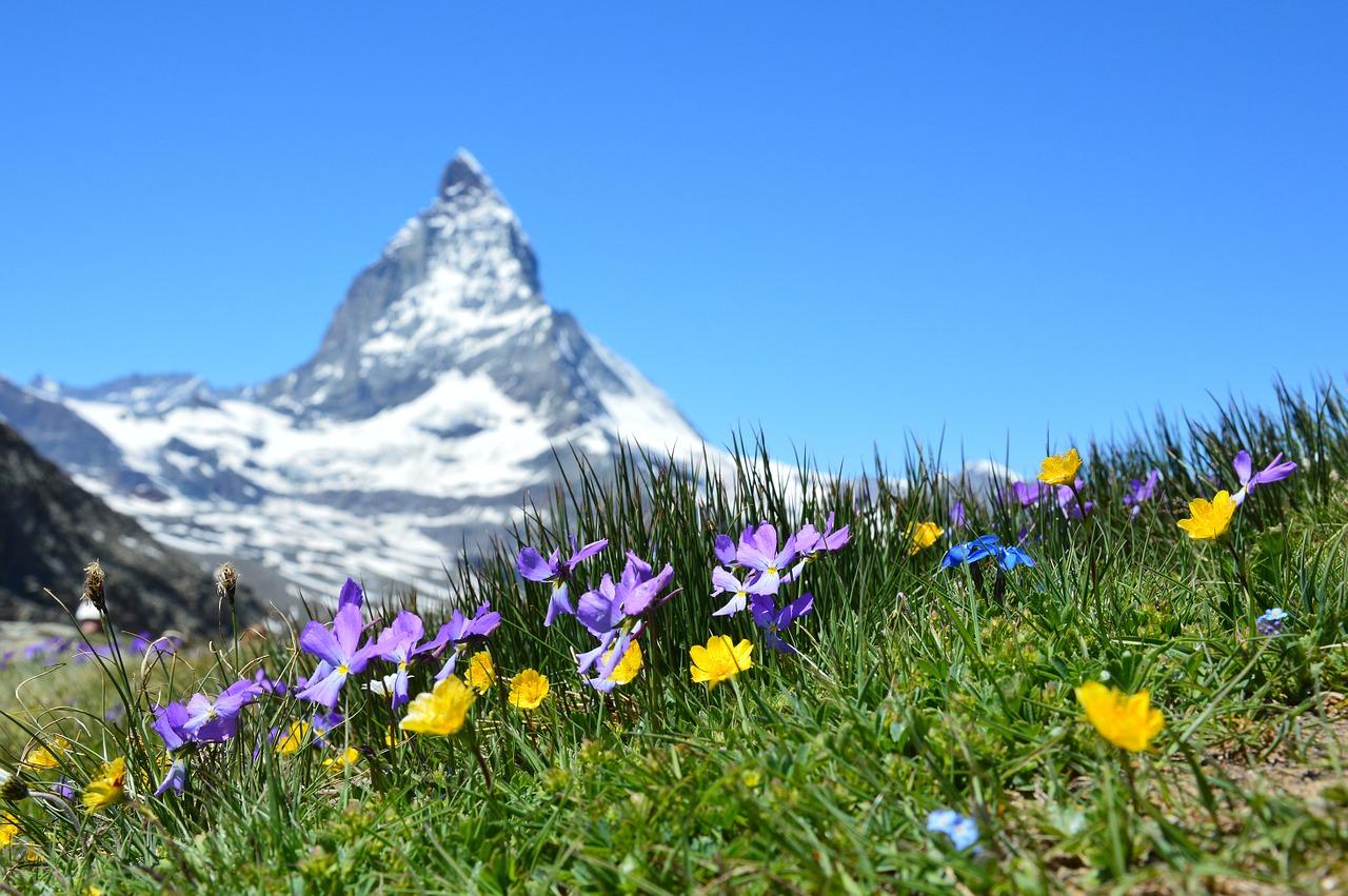 Inwestycje w nieruchomości w górach